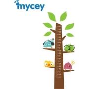Mycey - Mycey Boy Ölçer Kuş Ailesi Ağaçta
